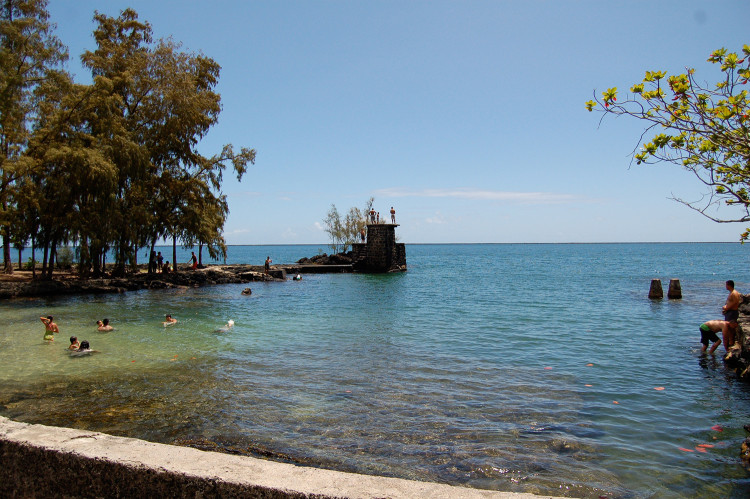 coconutisland1
